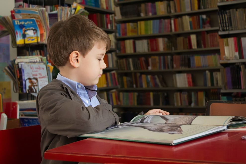 Boy reading in school library